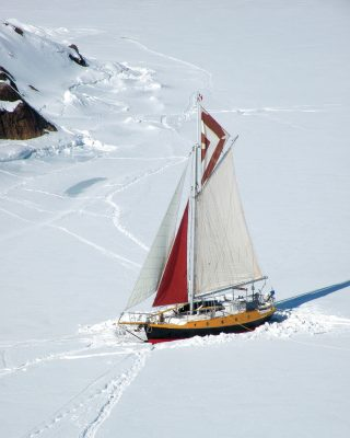solo-caribbean-sailing-Iron-Bark-Greenland