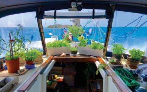 growing-food-on-boats-herb-garden-credit-Rick-Moore