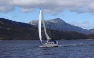 humpback-whale-sailing-encounter-Orca-bow-running-shot