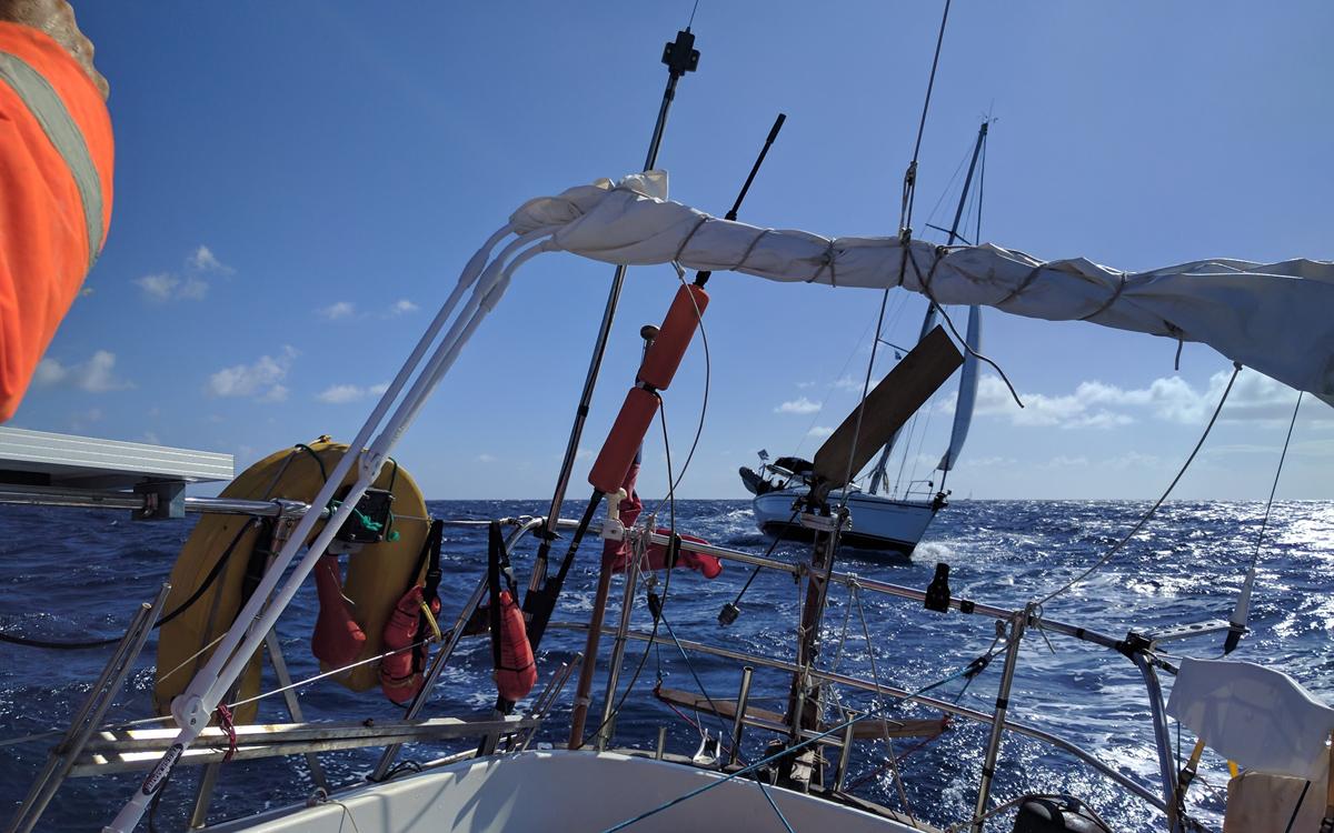 wind-vane-tips-tom-fisher-hebridean