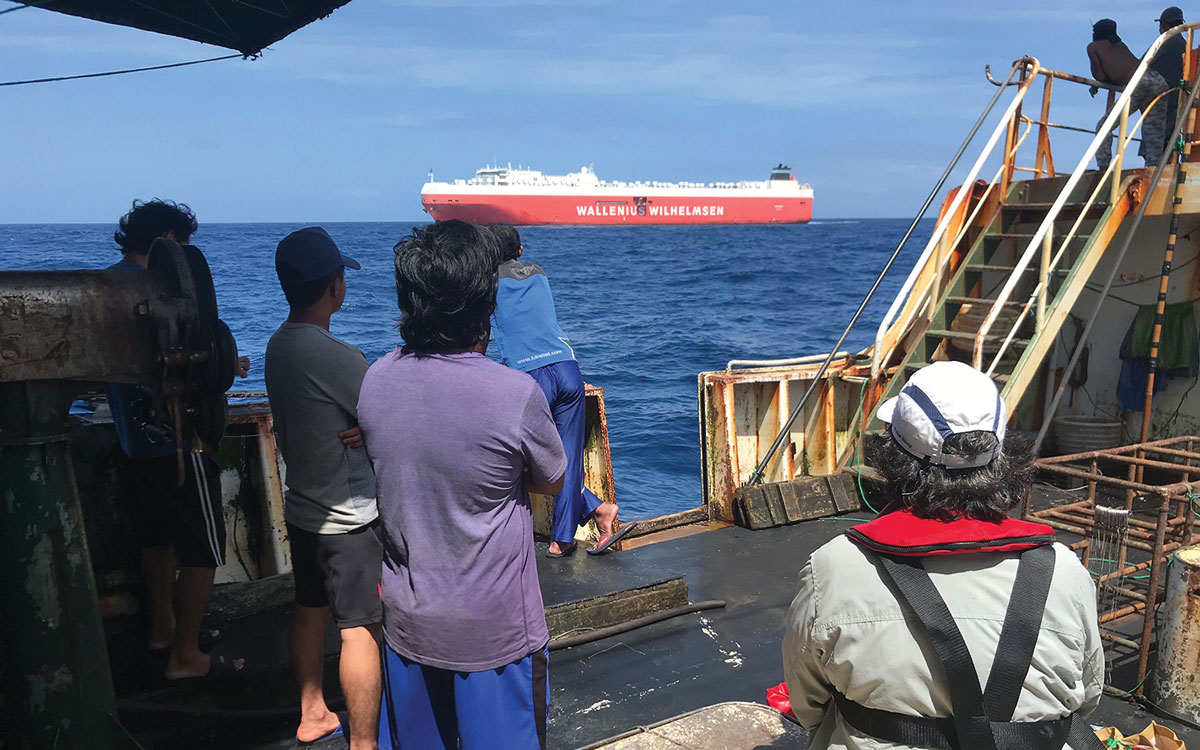 whale-collision-sank-yacht-ocean-rescue-ships-MV-Tonsberg-Fu-Yuan-Yu