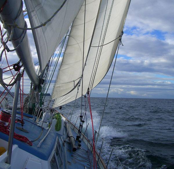 sail care