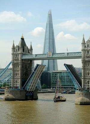 Clipper Race Finish London 2014