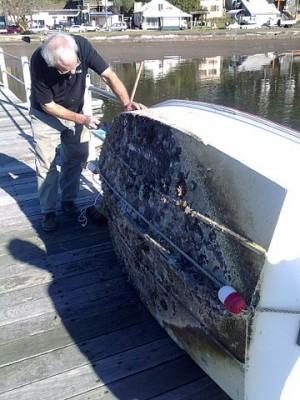 Antifouling Environmental Sailing Guide