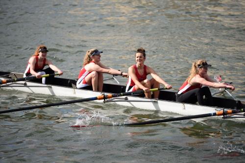 boatrace-article