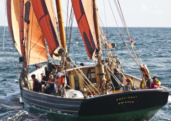 Brixham Trawler, Provident