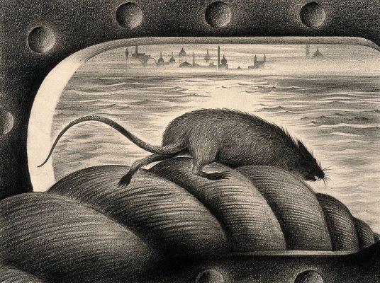 一只老鼠通过停泊的绳子离开了一艘飞船,从而展开了它。