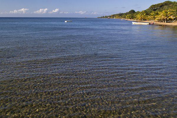 The couple were found off the coast of Punta de Manabique, Caribbean Sea Guatemala. Credit: Javier Alvarez