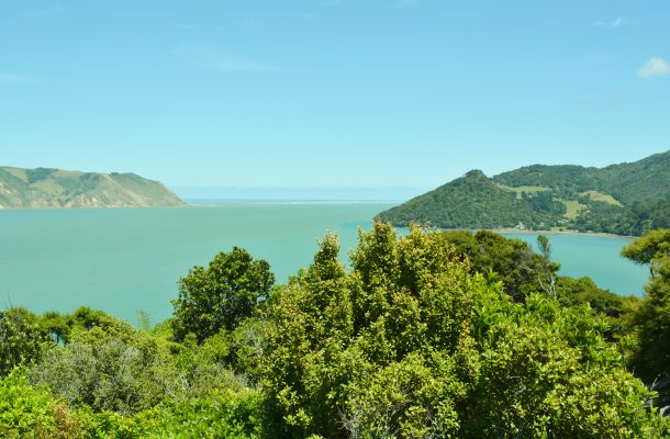 The blue waters of Manukau Harbour., New Zealand