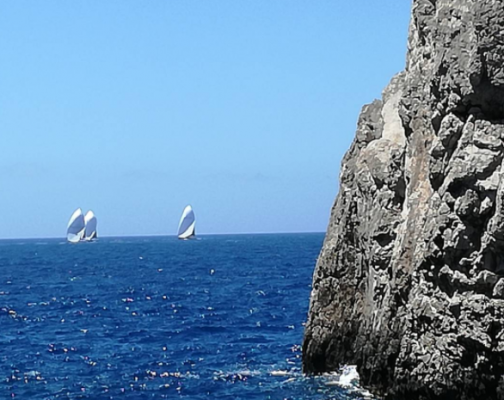 sailing boats at sea