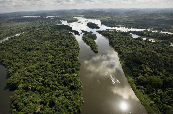 Xingu River 10 dead as boat sinks ...