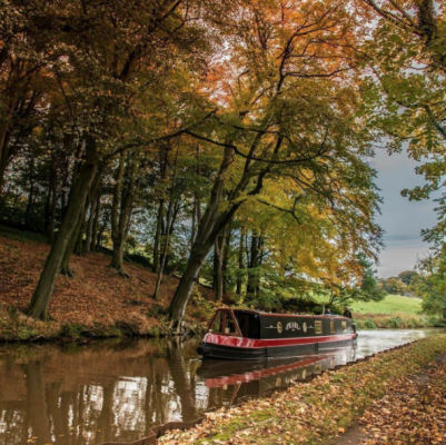 A red narrowboat cruising along a canal littered with autumn leaves