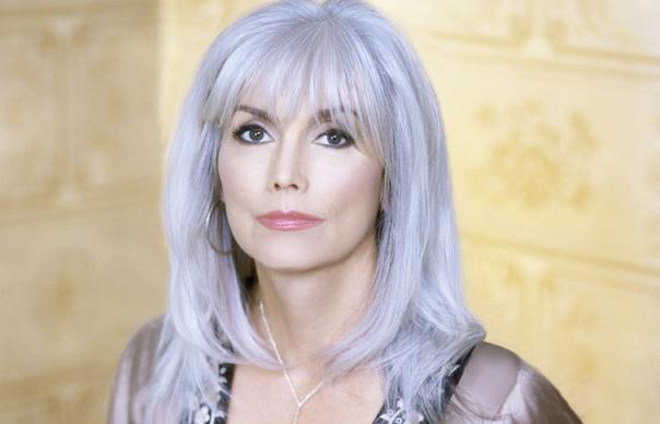 emmylou harris charged with hit and run