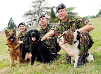 The Norfolk Dog Day raised money for Help For Heroes