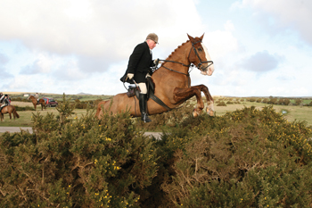 North Cornwall Hunt