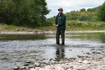 The Nith Salmon Fishery director Jim Henderson fishes his river. He once netted a 40 pounder for the hatchery
