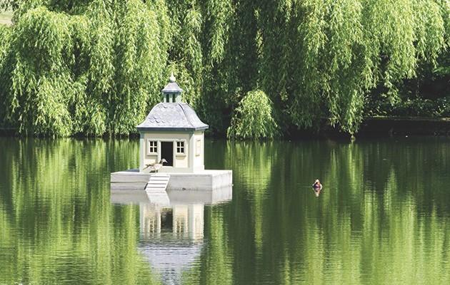 Luxury duck houses