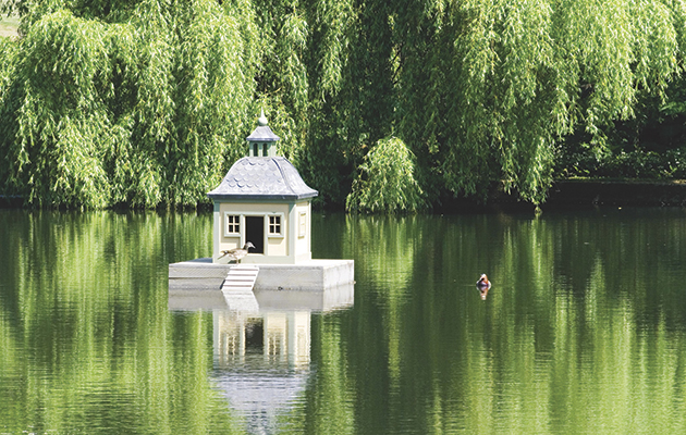 Luxury duck houses fabulous for fowl the field for House duck