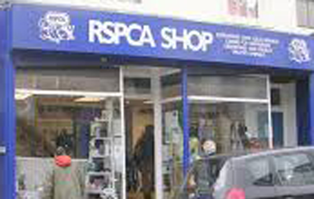 Image of: Wales Rspca Rspca South Australia Rspca Animal Rights Or Animal Welfare The Field