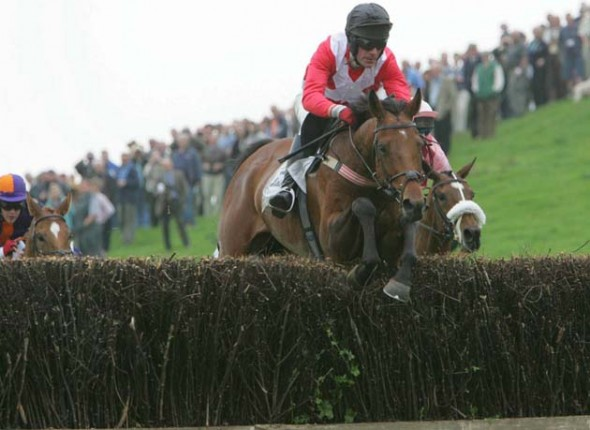 Point-to-Point fictures in March 2015 will show some great sport.