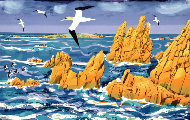 Society of Wildlife Artists Annual Exhibition 2014. Carry Akroyd's Granite, Gannet, Annet £885