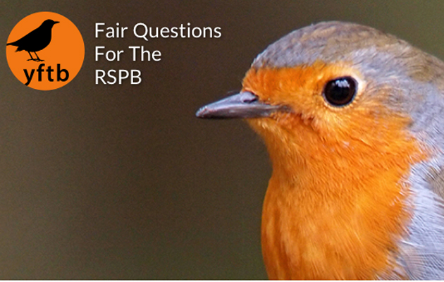 You Forgot the Birds is going to take on the RSPB. Lend your support.