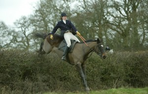 Full throttle over fly hedges. The best hunting there is?