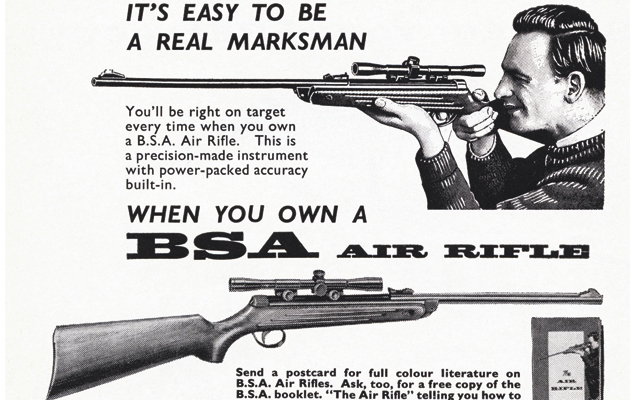 Airgun guide  What to shoot and what to buy  - The Field