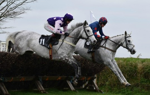 point to point. fixture June 2015