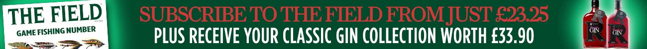 The Field ad banner for website