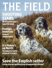 Cover of the July 2015 issue of The Field magazine.