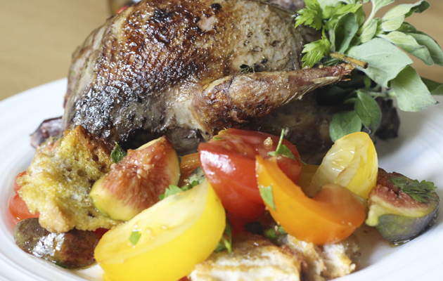 Whole roast grouse with tomato, fig and bread salad