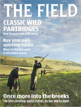 The Field cover, October 2015.