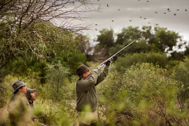 Book your Dove Shooting Holiday today