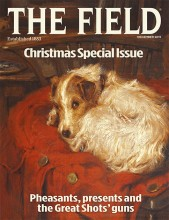 December 2015 Field cover