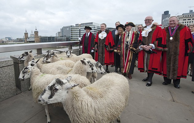Freemen of the city of London. London Bridge