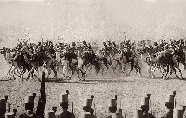 The Imperial Camel Corps - The Field