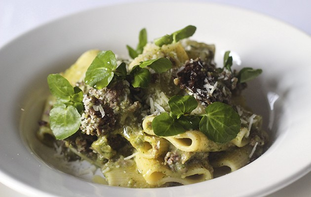 Millerighe haggis pasta with pesto