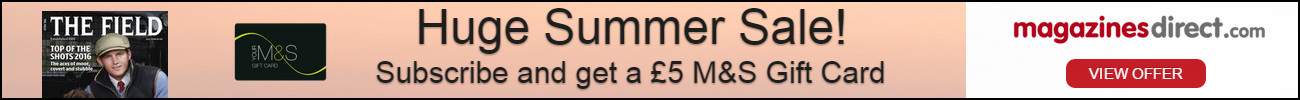summer-sale-1300x100-english