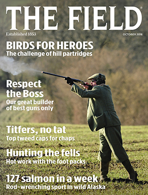 The Field October 2016 cover