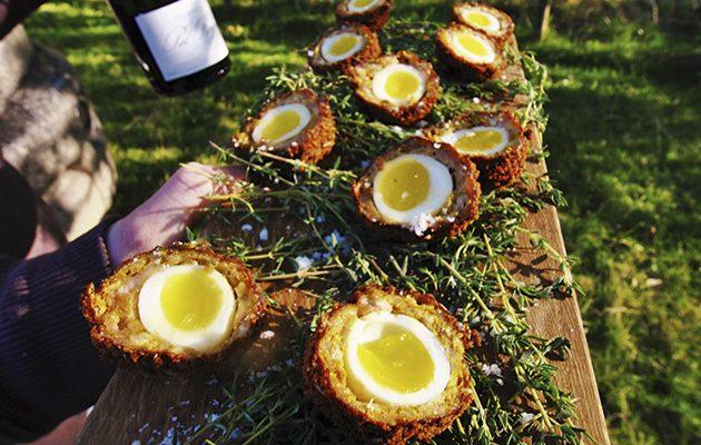 Pheasant scotch quails eggs