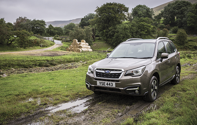 subaru forester 2 0d xc the field. Black Bedroom Furniture Sets. Home Design Ideas
