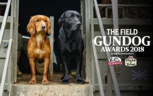 The Field Gundog Awards 2018