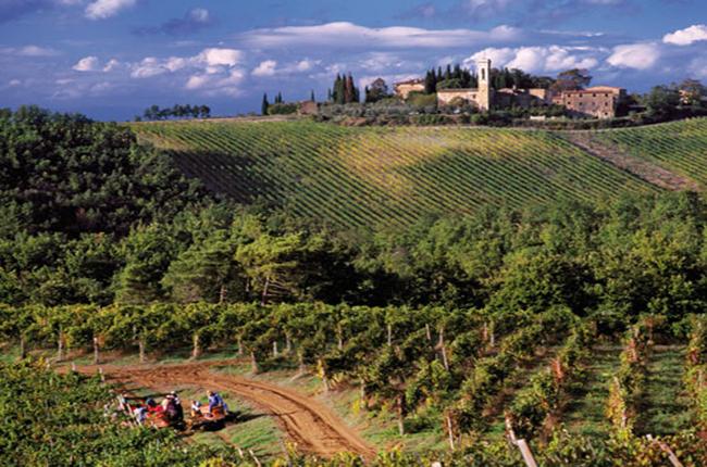Tuscany 2004
