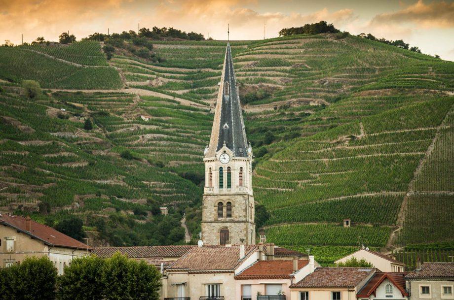 Understanding Hermitage wine