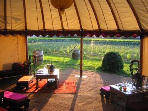 Camping at Krug, Clos du Mesnil