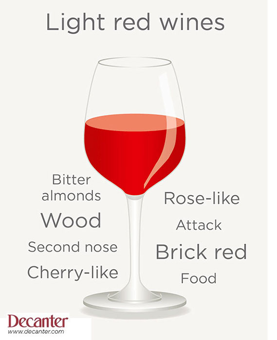 light red wine tasting note graphic