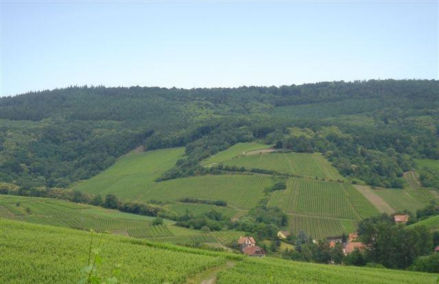 Schieferkopf, Alsace