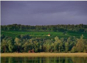 Anjou Loire
