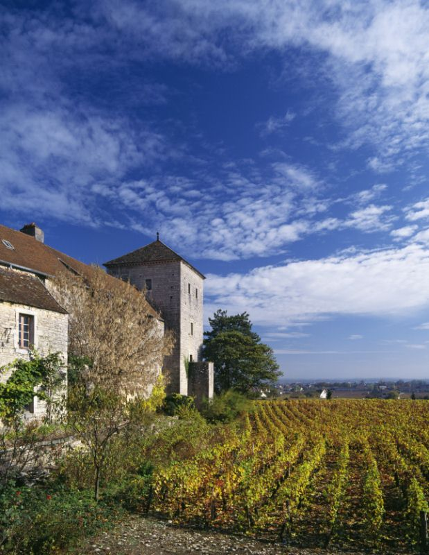 Chateau Gevrey Chambertin